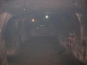 ゴアガジャ 石窟左側