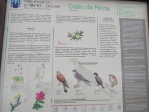 ポルトガル  ロカ岬