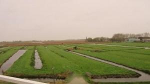 運河の風景