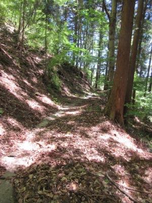 羽根尾城址へ水路のある山道