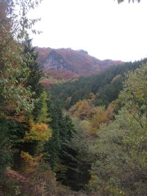 掃部ケ岳登山 杖の木林道を下る