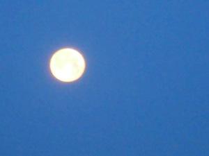 4月1日未明の月