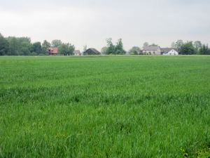 農村風景(ザリピエ村)