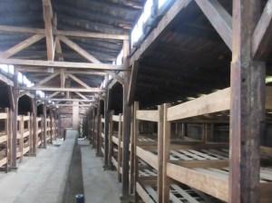 第二アウシュヴィッツ・ビルケナウ木造収容棟