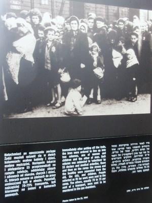 第二アウシュヴィッツ強制収容所
