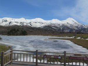 知床五湖(平成31年4月21日)
